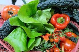 איך ללמד את הילדים לאכול ירקות
