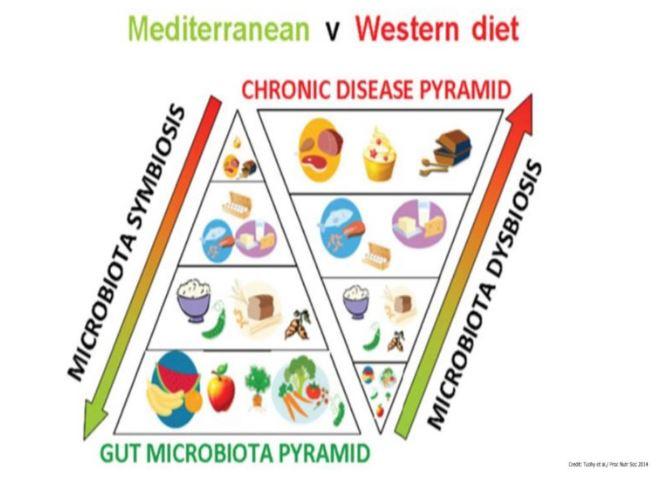 Mediterranean vs Western Diet